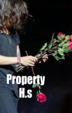 Property H.S by HarryStyles_Forever6