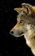 Werewolf RP ((Closed)) by MorbidMusk3t33r