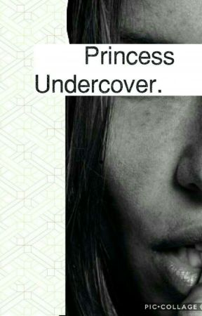 Princess Undercover by LeDeLS