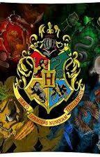 Harry Potter - Reise in die Zukunft RPG by Lena_RPG2