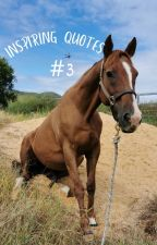 Inspirational Quotes #3 by Love_Horsemanship