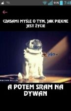 Memy I Inne Takie XD by Gabixx_omom
