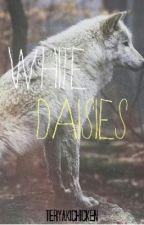 White Daisies by teryakichicken