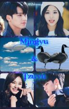 Fanfiction (Mingyu & Tzuyu) by Widialorensa