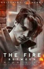 Brittainy C. Cherry - The Fire Between High & Lo  by kaahbooks2