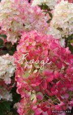 Rouge ~ Newt Scamander by helen4nne