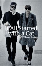 It All Started with a Cat (A Vixx WonTaek Fanfic) by Nightsong97