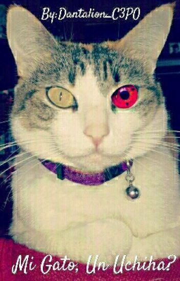 Mi Gato, Un Uchiha?