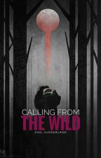 Calling from the wild [Sterek] by Dan_Sunderland