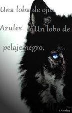 Una loba de ojos azules y un lobo de pelaje negro by Cristal45