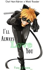 Chat Noir/Adrien x Male! Reader [Sequel: I'll Always Love you]✔️ by Foxy_Kitsune_