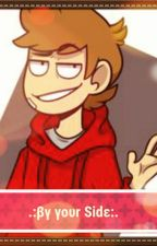 .:By Your Side:. °Tord x Reader° by SaltyyQueen