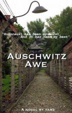 Auschwitz Awe by Falconrays