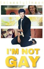 I'm Not Gay! [l.s] by laarry1sra3l
