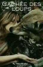 Caché des loups by NanoushkaAnge