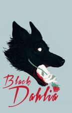 BLACK DAHLIA  | Klaus Mikaelson [BOOK ONE] by scxrcrxw