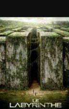 Le Labyrinthe ~ NEWT {FINI} by Fanatic_love_TWD
