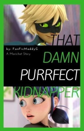 That Damn Purrfect  Kidnapper  by FanFicMaddyG