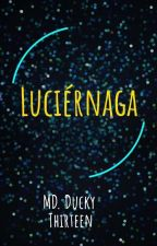 Luciérnaga*~ by DuckyThirteen