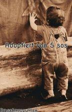 Adoptiert von 5SOS by schnuppyAlex