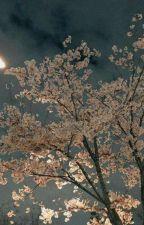 Darağacı 🌸 SasuSaku by shuchiha