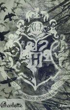 RPG Harry Potter  by Ncharlotte