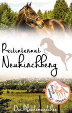 Reitinternat Neukirchberg by Die_Pferdemaedchen