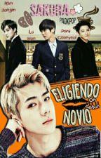 Eligiendo Novio by paokpop