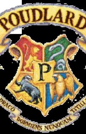 One Shot Histoire Pour Chaque Maison Harry Potter Terminee