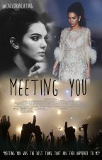 Meeting You { Y/N + Kendall Jenner } by Califxrnicating