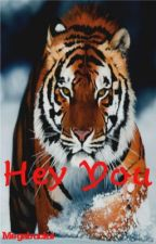 Hey You by Megabucks