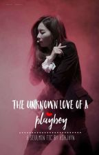 The Unknown Love Of A PLAYBOY • SeulMin by ashjayn