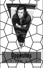 Opposites Attract // larry stylinson by theconfidence