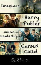 Imagines Harry Potter & Animaux fantastiques & Cursed Child by Elsa_51