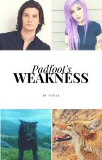 Padfoot's Weakness - HP / Marauders time travel by videle-