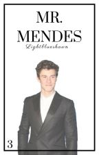 Mr. Mendes || Shawn Mendes by lightblueshawn