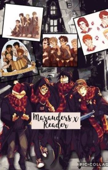 Marauders x Reader