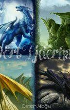 4 Ejderha by oyunkafasosman
