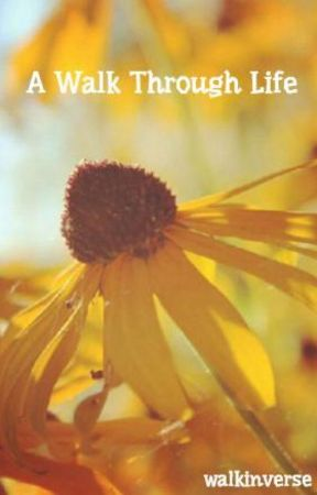 A Walk Through Life by walkinverse