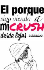 El porque sigo viendo a mi  crush desde lejos. by 31del12del13