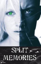 Split Memories | A Split Story  by nightmare_carousel