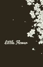Little Flower {MyStreet X Reader} by Thicc_Daddy