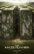 Into The Maze C - Fanfic The Maze Runner (El Corredor Del Laberinto)[PAUSADA] by ptheboss04