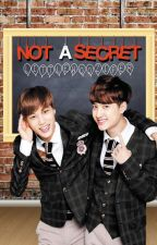 Not a Secret | Kaisoo by Cutienamu