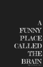 A Funny Place Called The Brain by --epoch