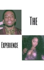 The Experience (Woody McClain/ Summerella) by MadisonTaylor138