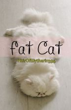 Fat Cat | HunHan by HeirOfSlytherin394