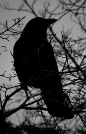 El cuervo y el espantapájaros. by Tsuzuku-DIX
