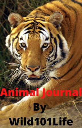 Animal Journal by Wild101Life by Wild101Life