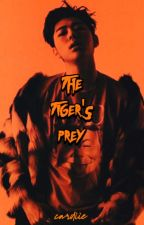the tiger's prey | Zico by cardiie